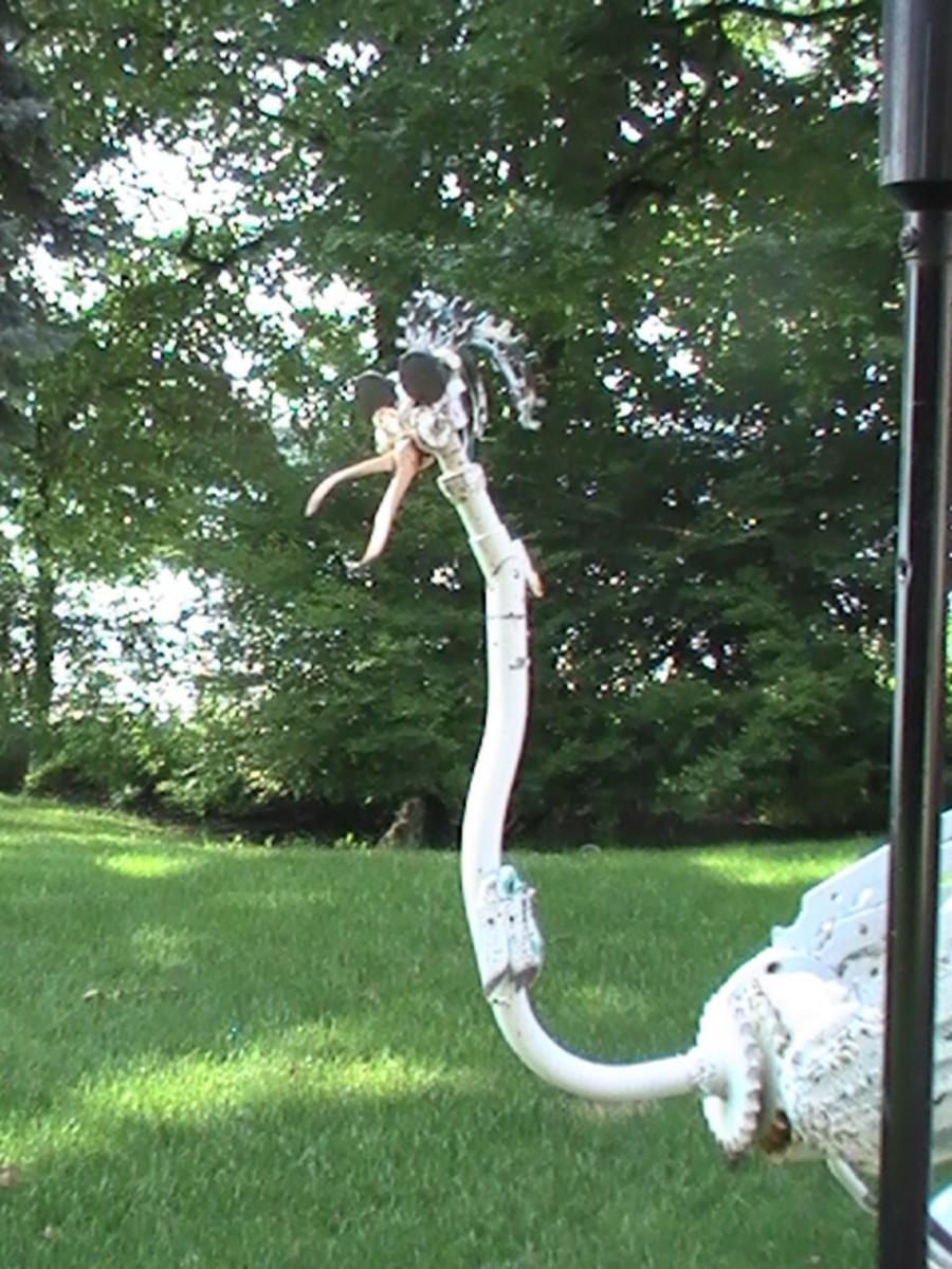 Fun creature along Geneva Lake pathway.