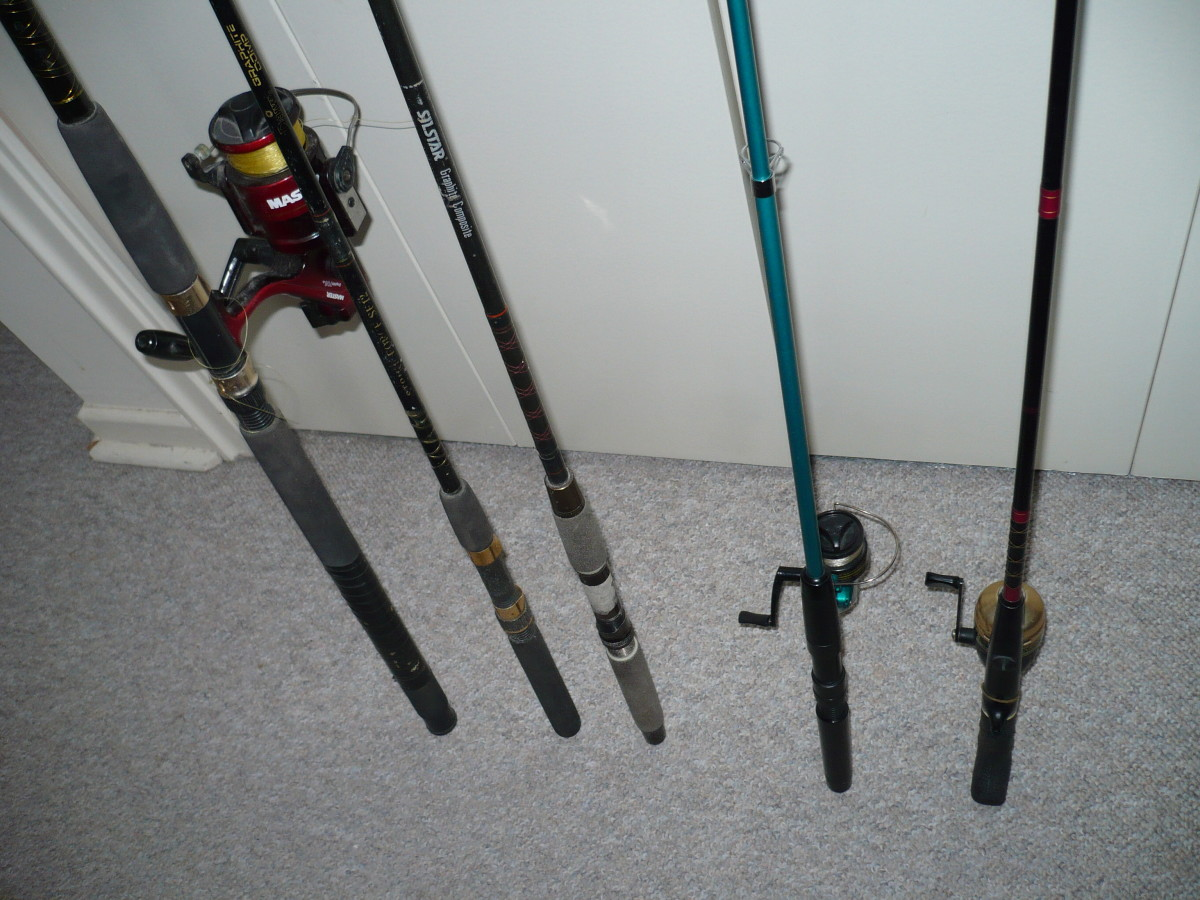 Salt water fishing rods and reels are much bigger and sturdier for heavier fish.