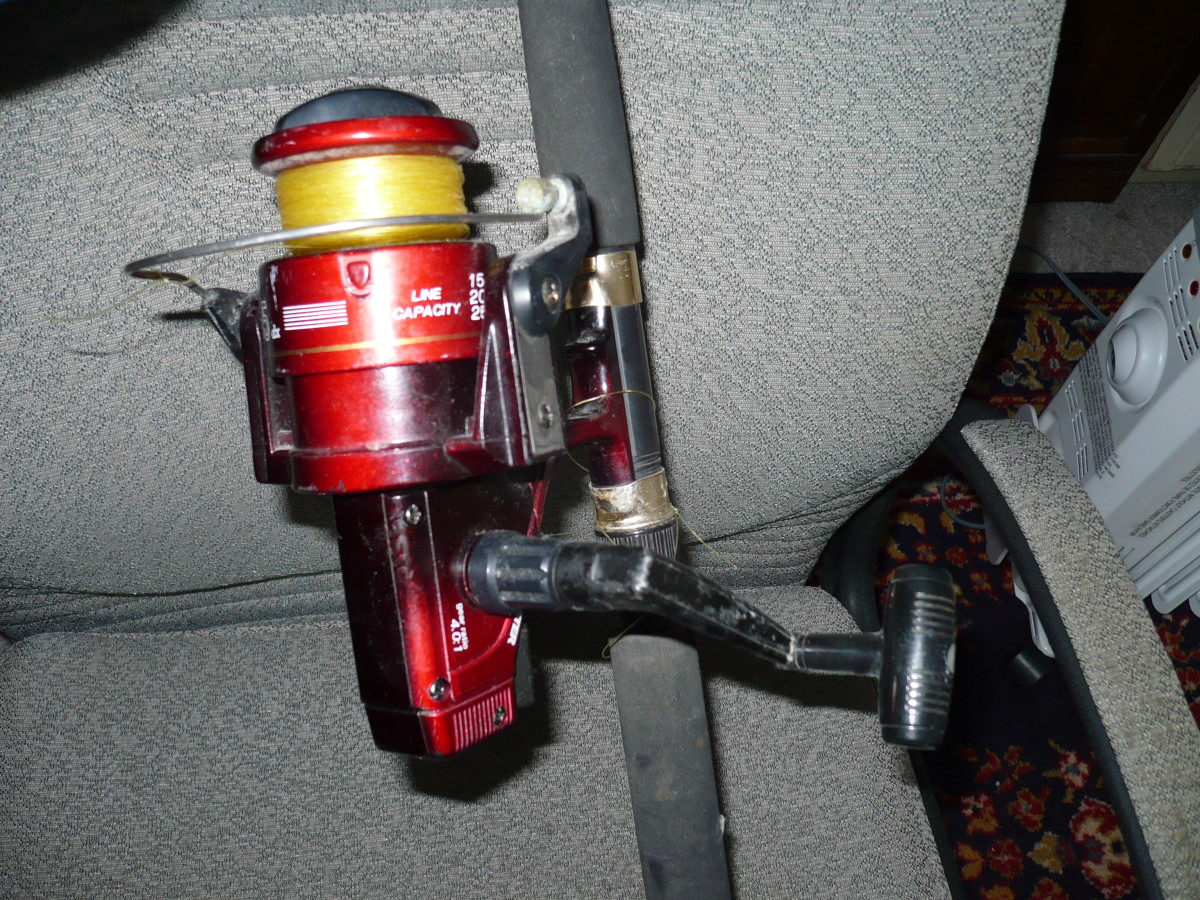 My Salt water Master reel