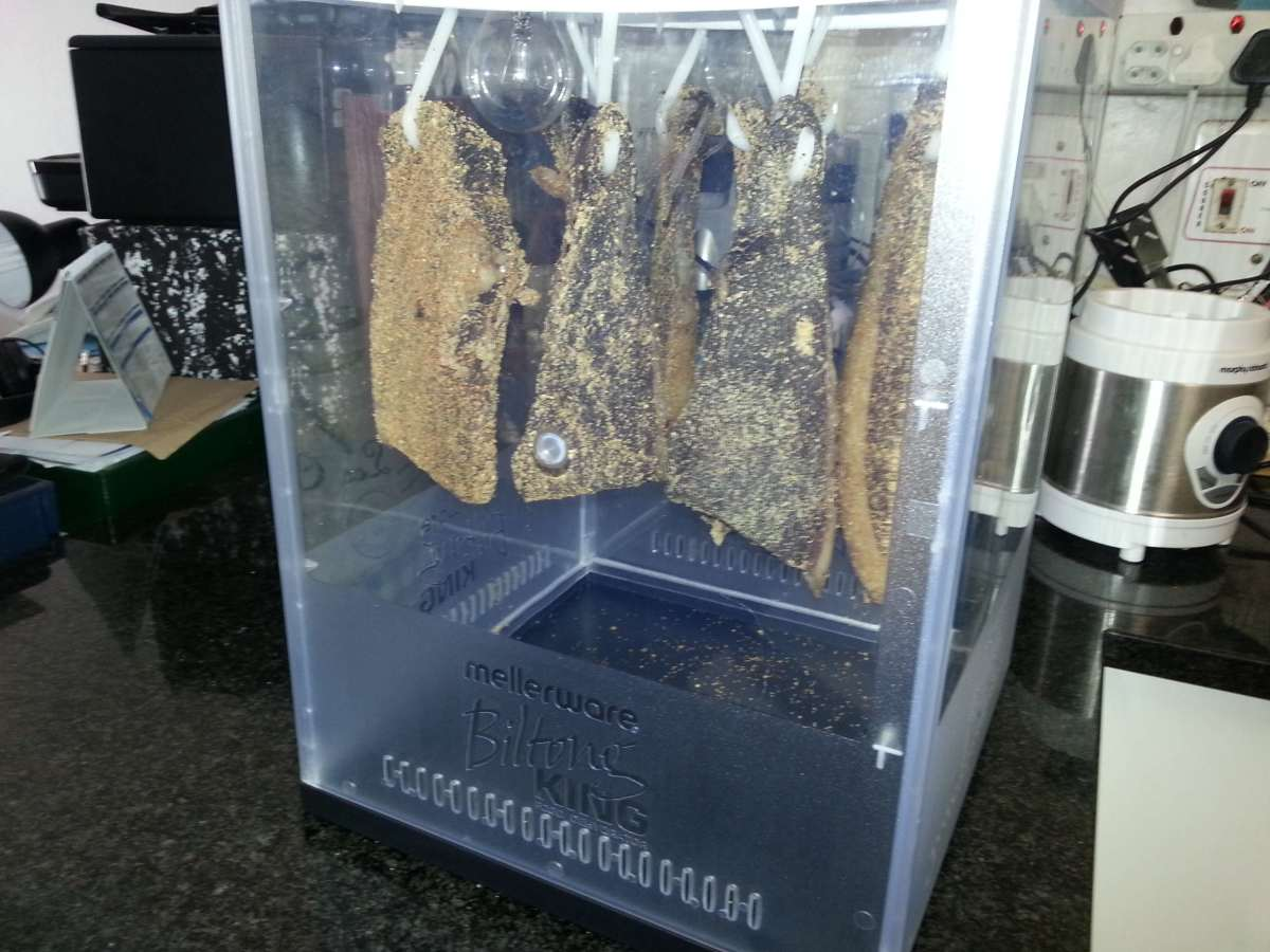 Leave the biltong to dry in a cool area that is not humid or damp