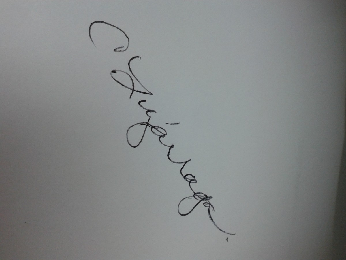 "My personal, legal signature is 'C Luzarraga."" (Sometimes, I sign my nickname BibiLuzarraga; apparently, I am a victim of identity theft.)"