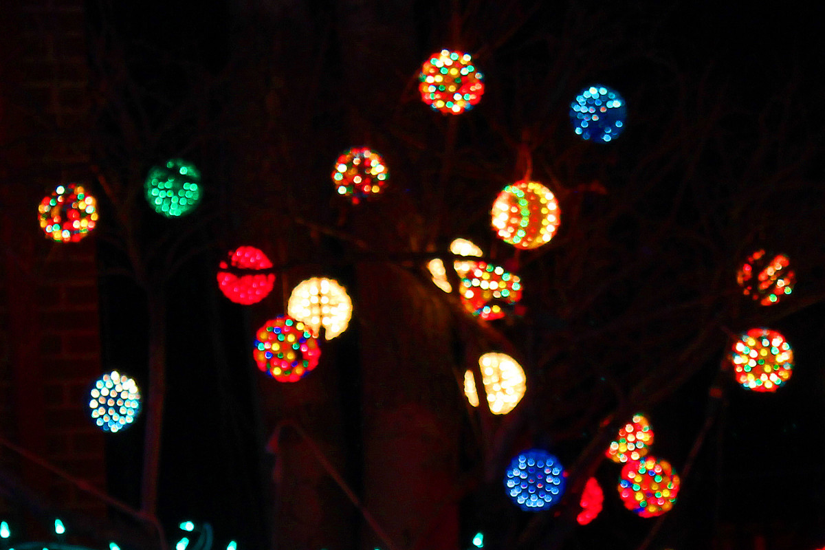 Light in trees--Kloewer house--Holiday and Christmas Lights in Littleton