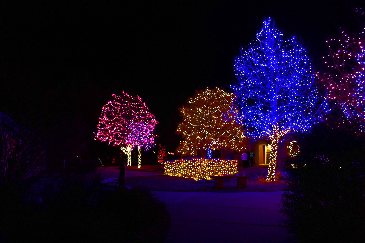Hudson Gardens Entrance--Holiday and Christmas Lights in Littleton