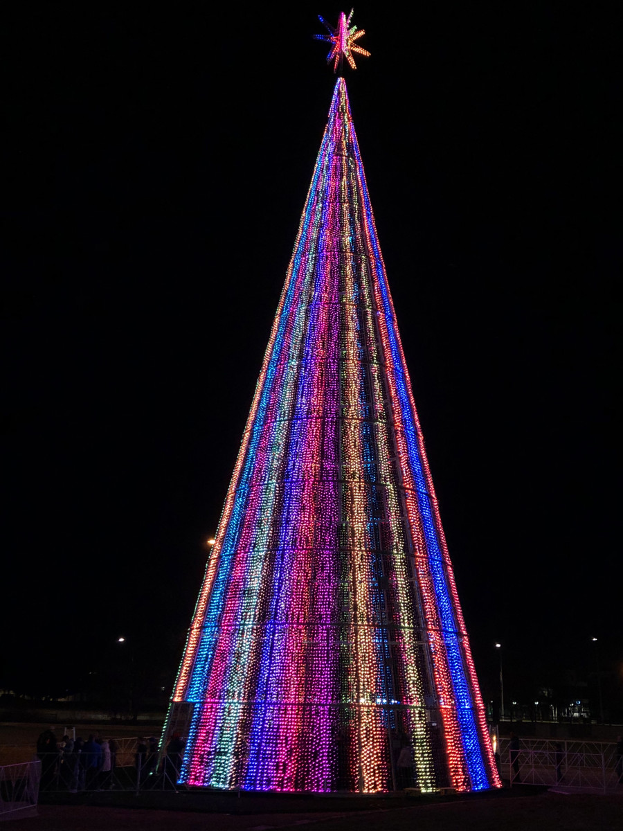 Mile High Tree in Denver, Colo. with striped lighting pattern.