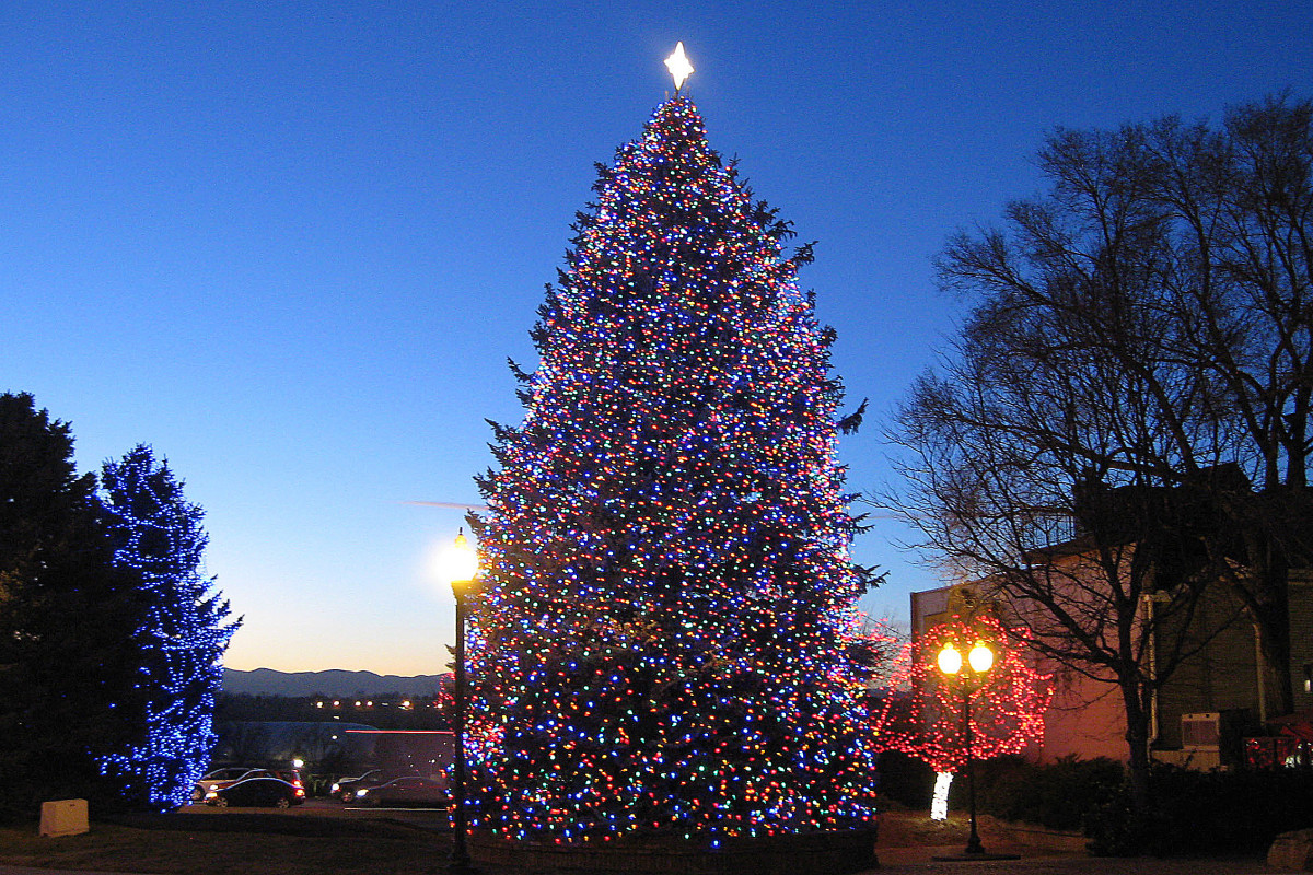 Lighted tree--Holiday and Christmas Lights in Littleton