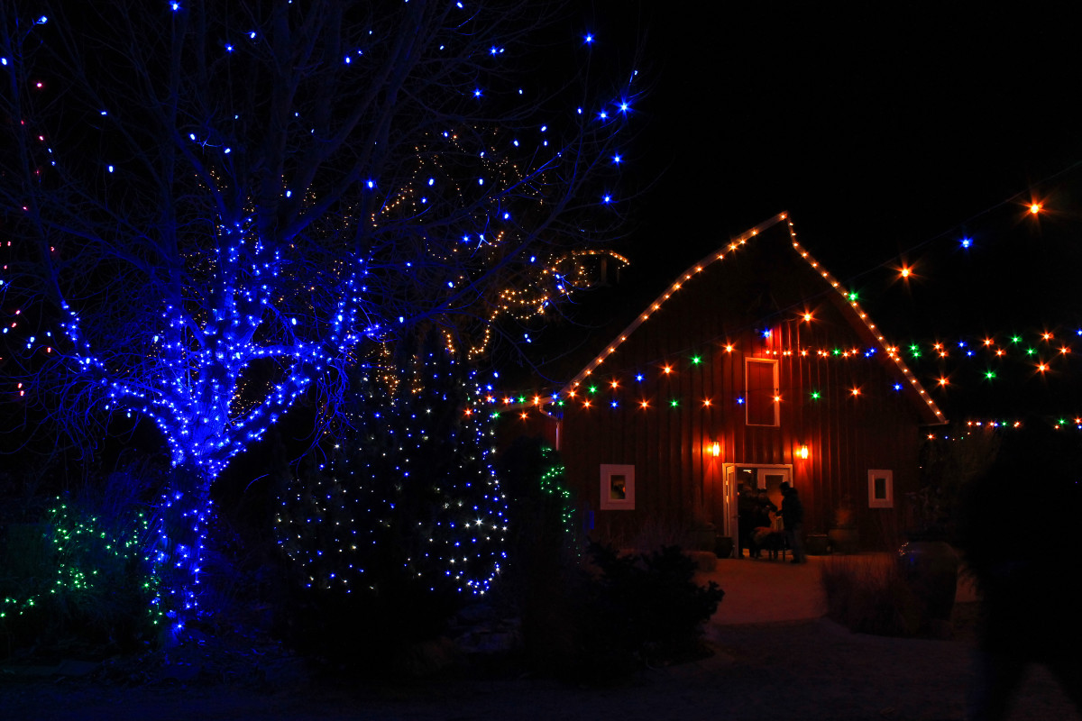 The barn with holiday lights at Chatfield  Farms
