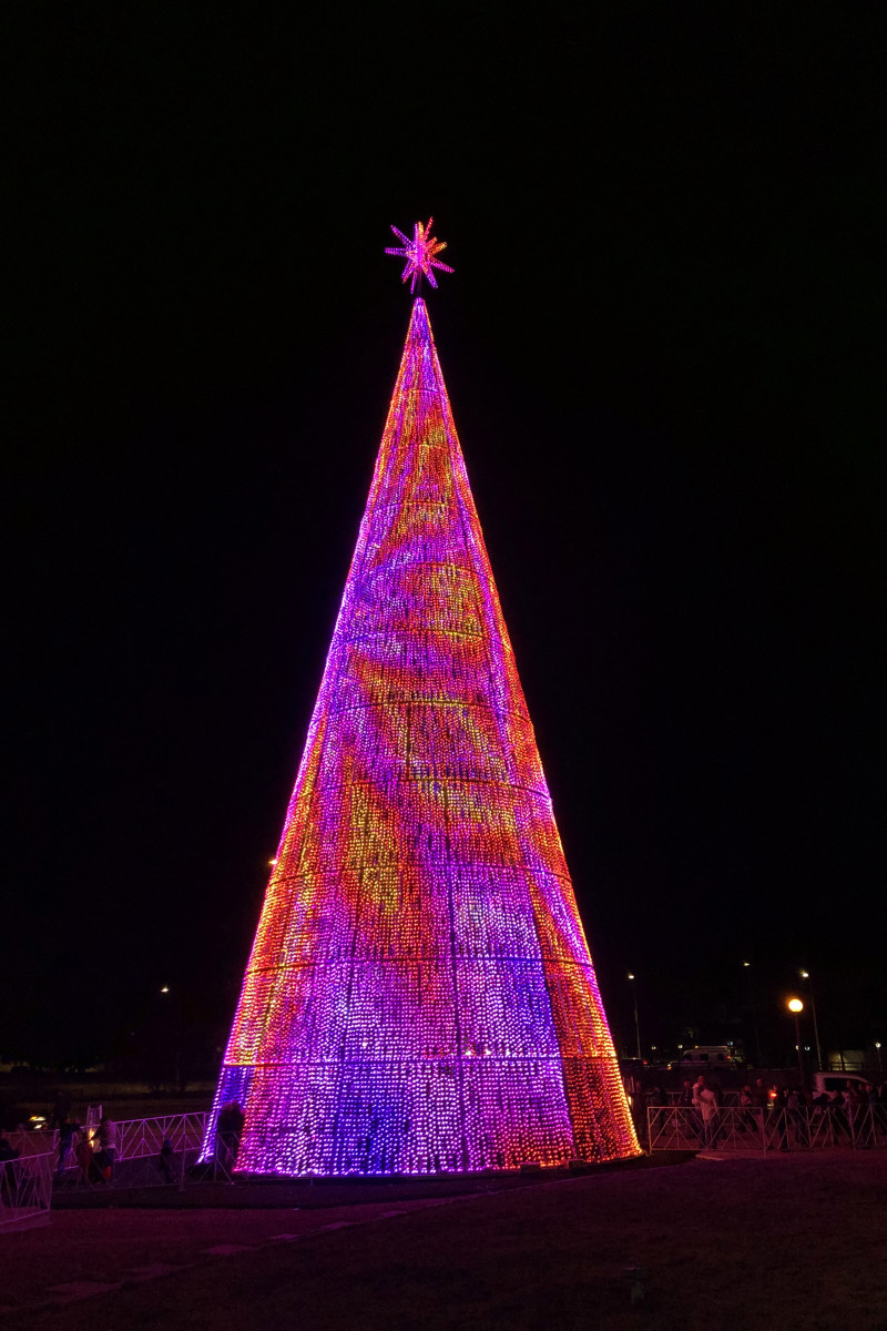Mile High Tree in Denver, Colo. with purple and orange lighting pattern.
