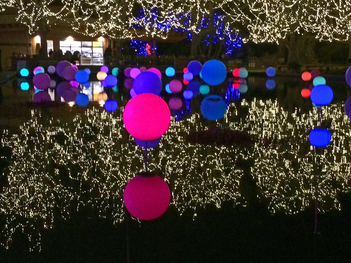 Lights on the water at Denver Botanic Gradens
