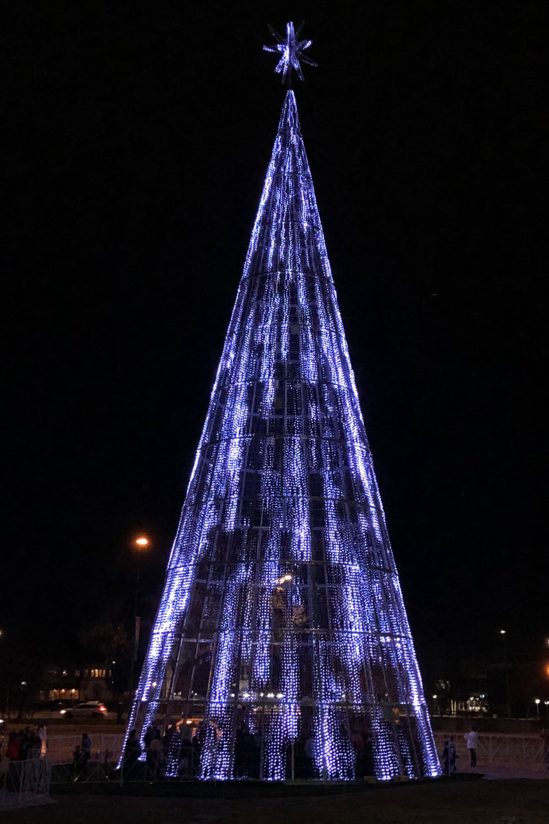 Lighting pattern for Mile High Tree in Denver, Colo.