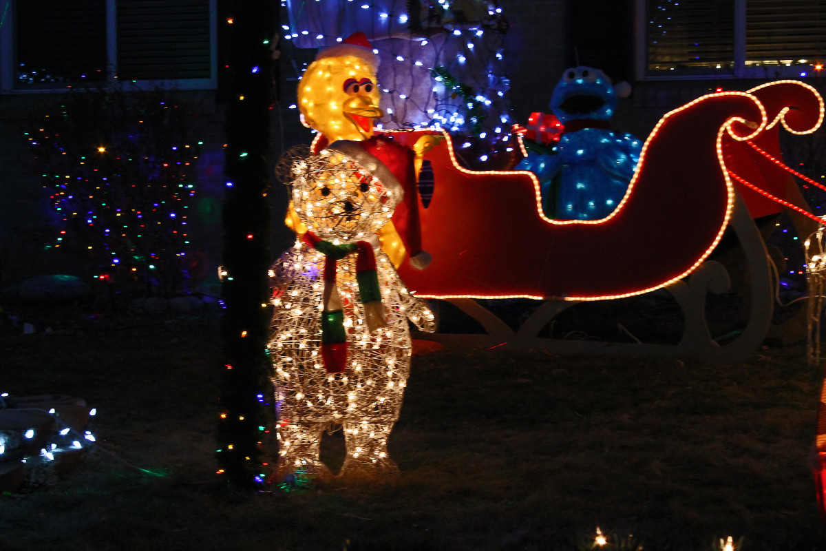 Big Bird, polar bear and sleigh--Holiday and Christmas Lights in Littleton