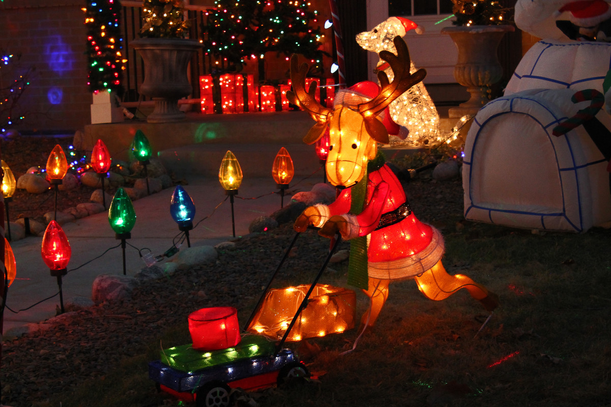 Reindeer mowing lawn--Holiday and Christmas Lights in Littleton