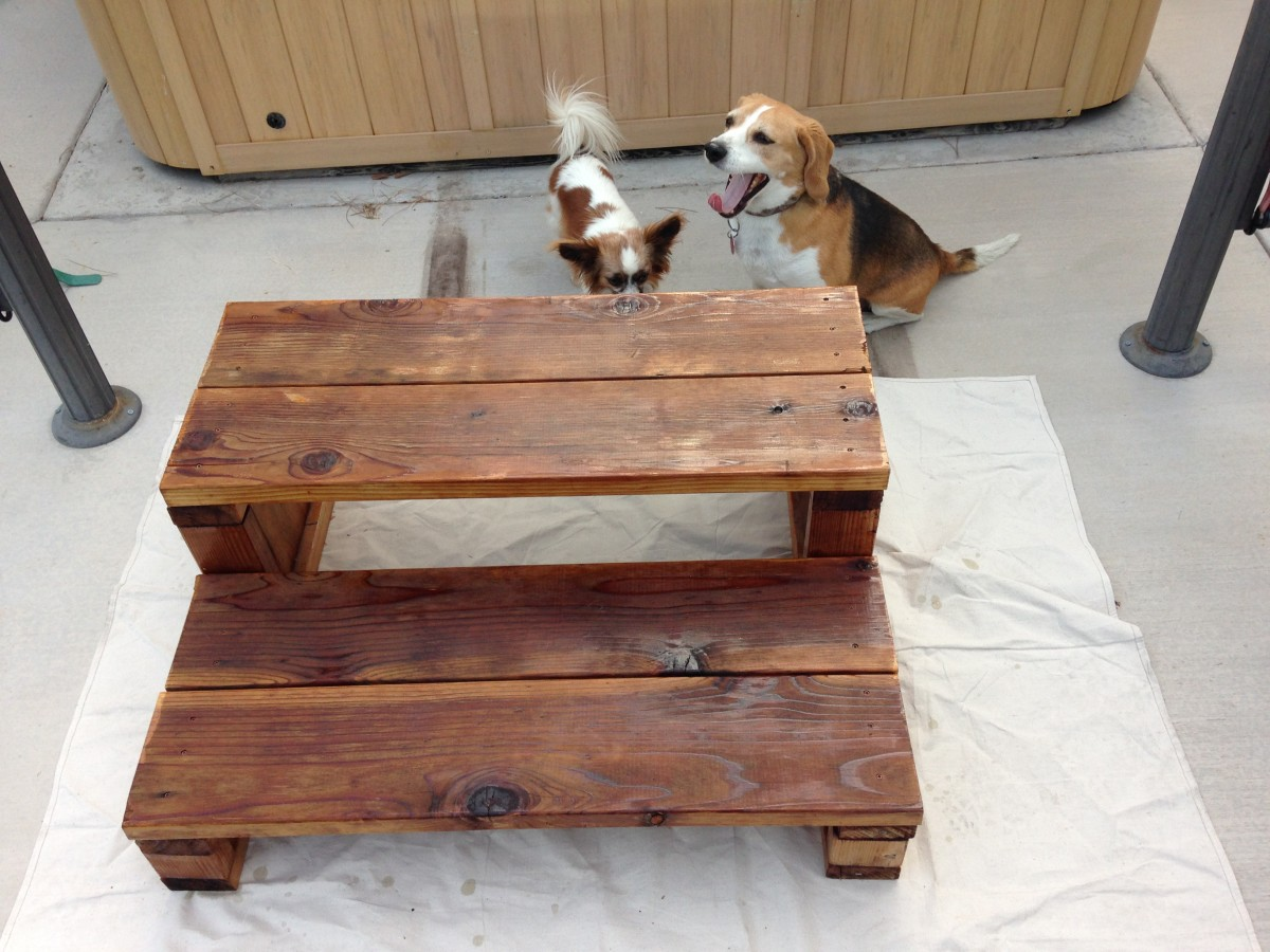 After refinishing.  Bella appears interested, but Mr. Beagles is not.