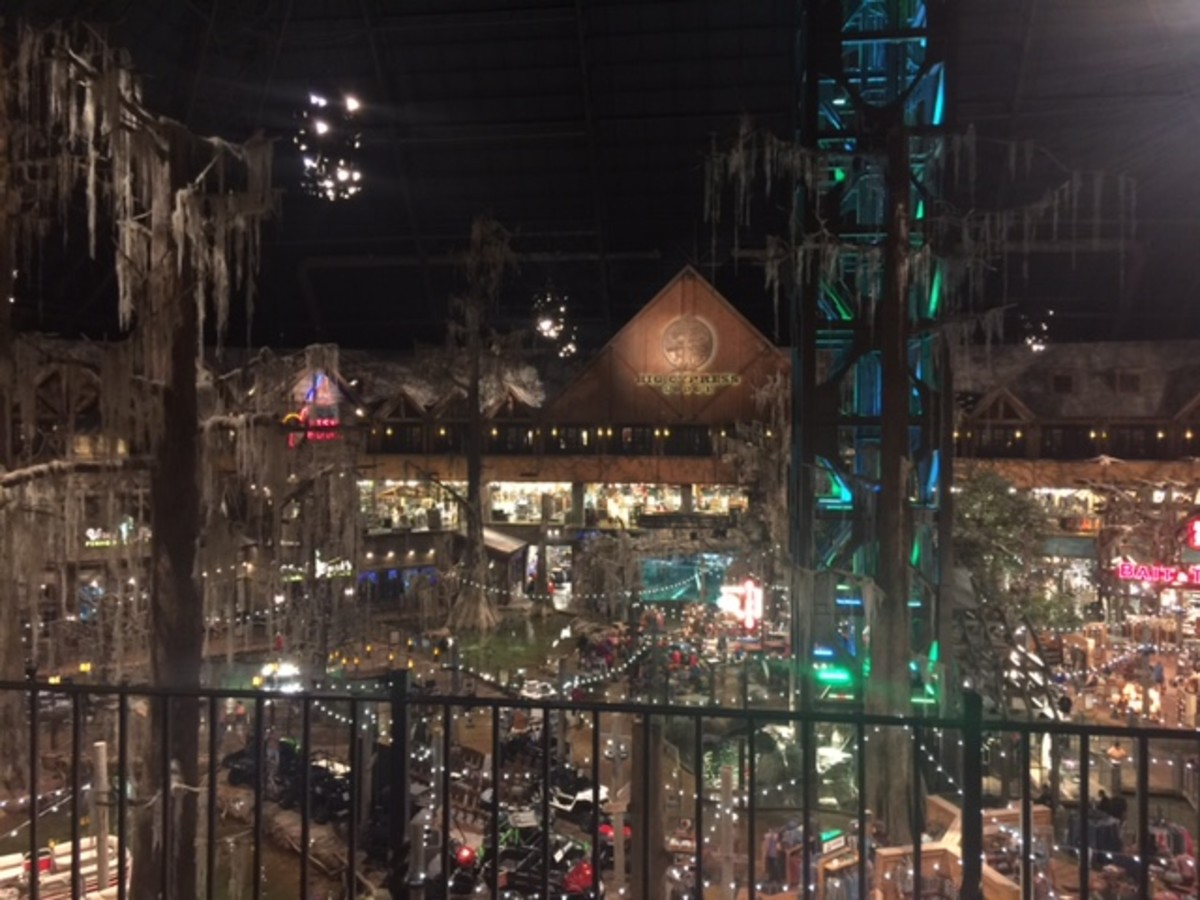 View of Bass Pro Store from balcony of room