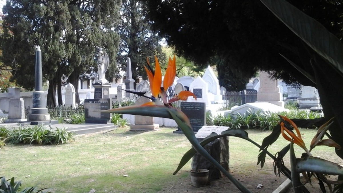 Cemetery of the Strooidak NGK parsonage, Paarl, South Africa