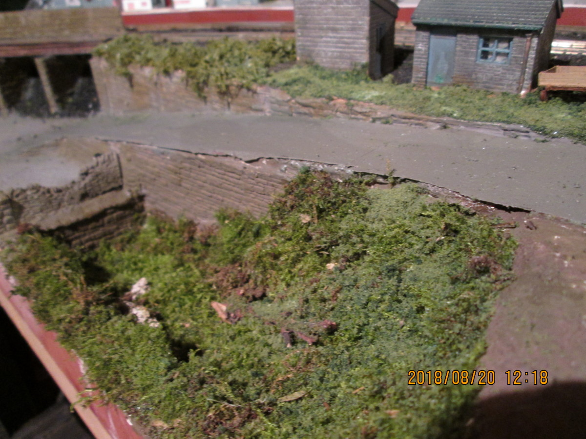 The 'carr' has been inundated by greenery, as has the ground around the two railway buildings this side of the occupation bridge. A few railings