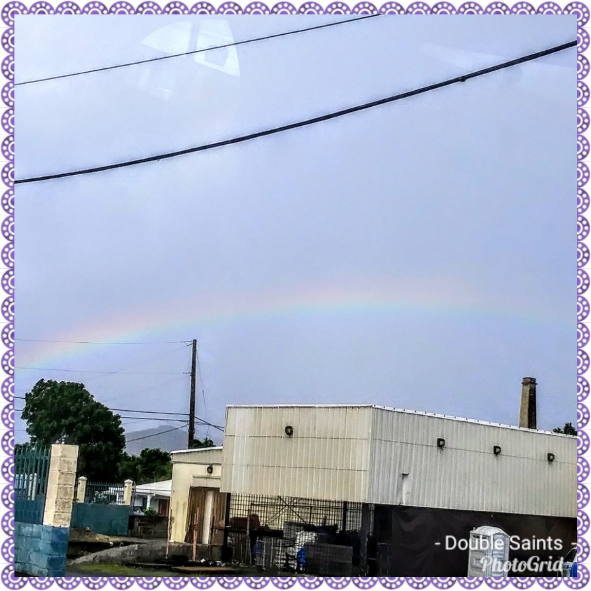 rainbowcollections