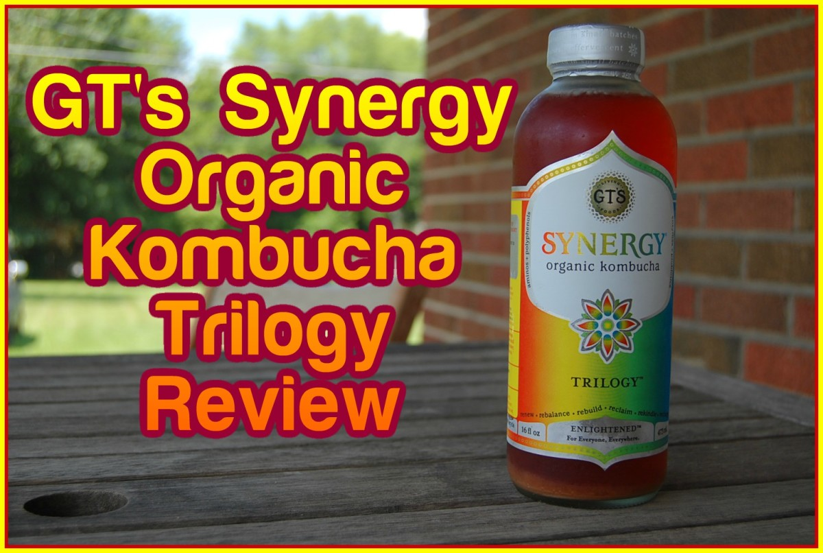 GT's Synergy Organic Kombucha Trilogy Review- My First Impression on Raw Vegan Kombucha