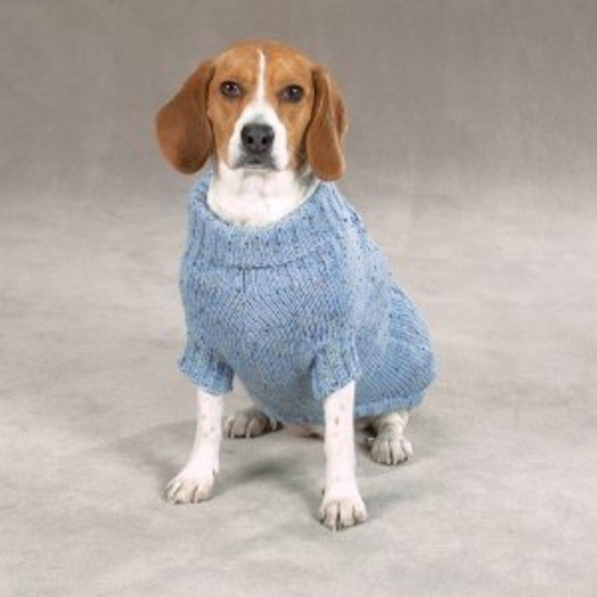 6 Free Dog Coat Knitting Patterns Keep Your Dog Warm And