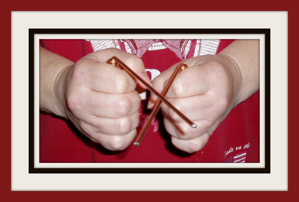 Mini dowsing rods.  Photo by GerberInk.