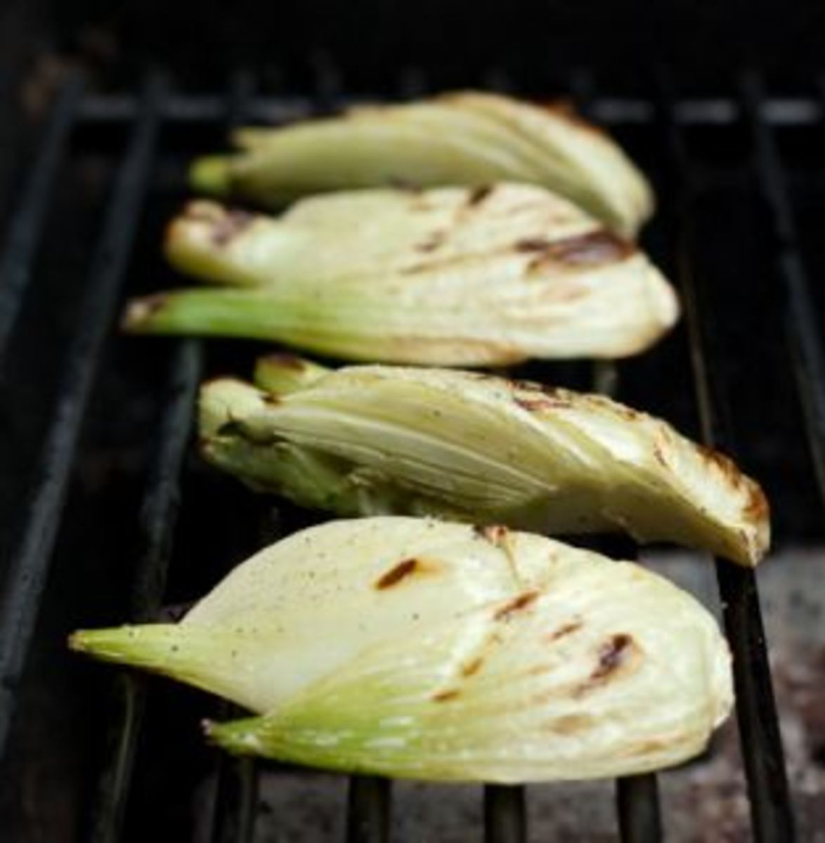 how to grill fennel