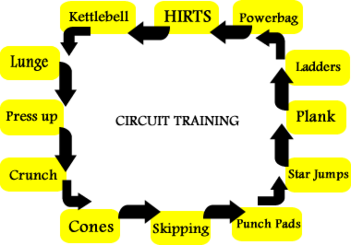 How To Start A Circuit Training Fitness Class Hubpages