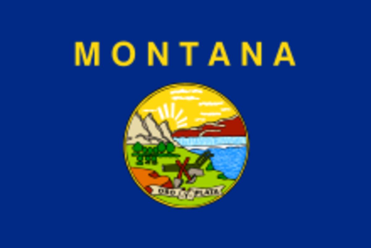 Montana Flag. Is Zeek having problems there?