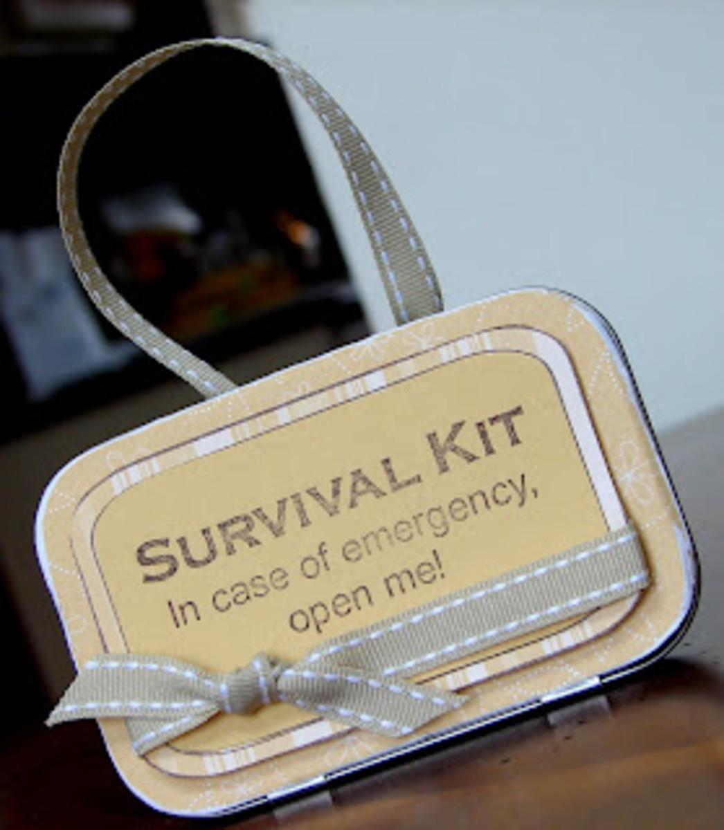 germaphobe Survival Kit