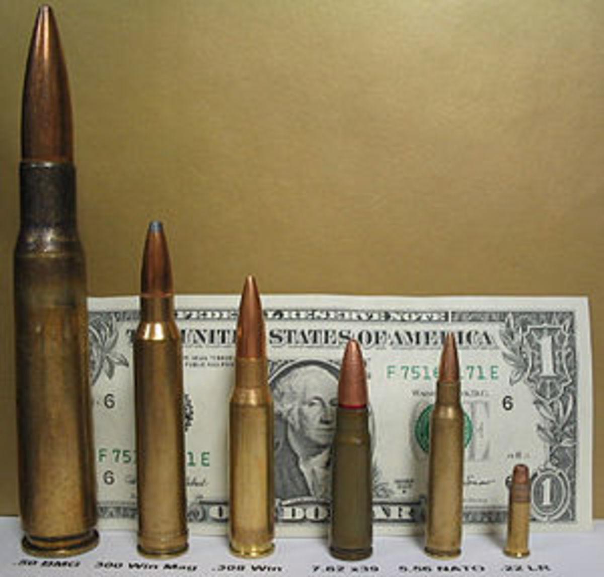 From left: .50 BMG, 300 Win Mag, 7.62x51mm NATO, 7.62×39mm, 5.56×45mm NATO, .22LR
