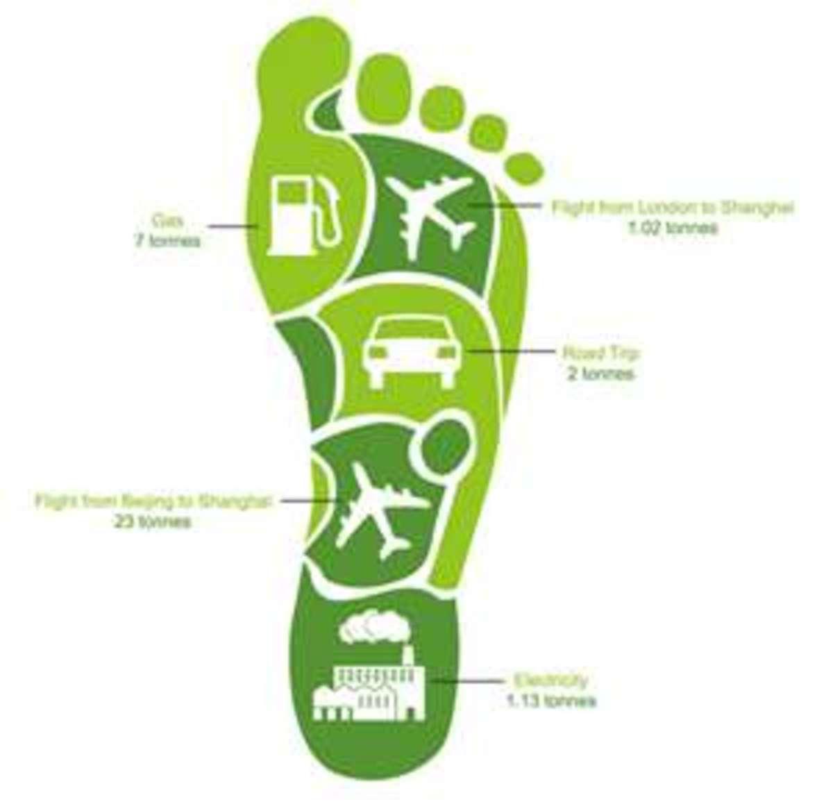 sustainable-society
