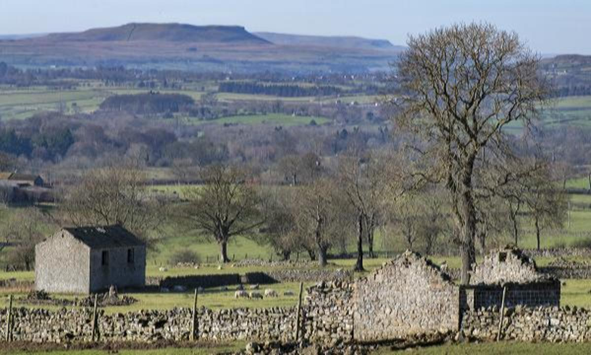 The view south across the dale from Redmire to Pen Hill