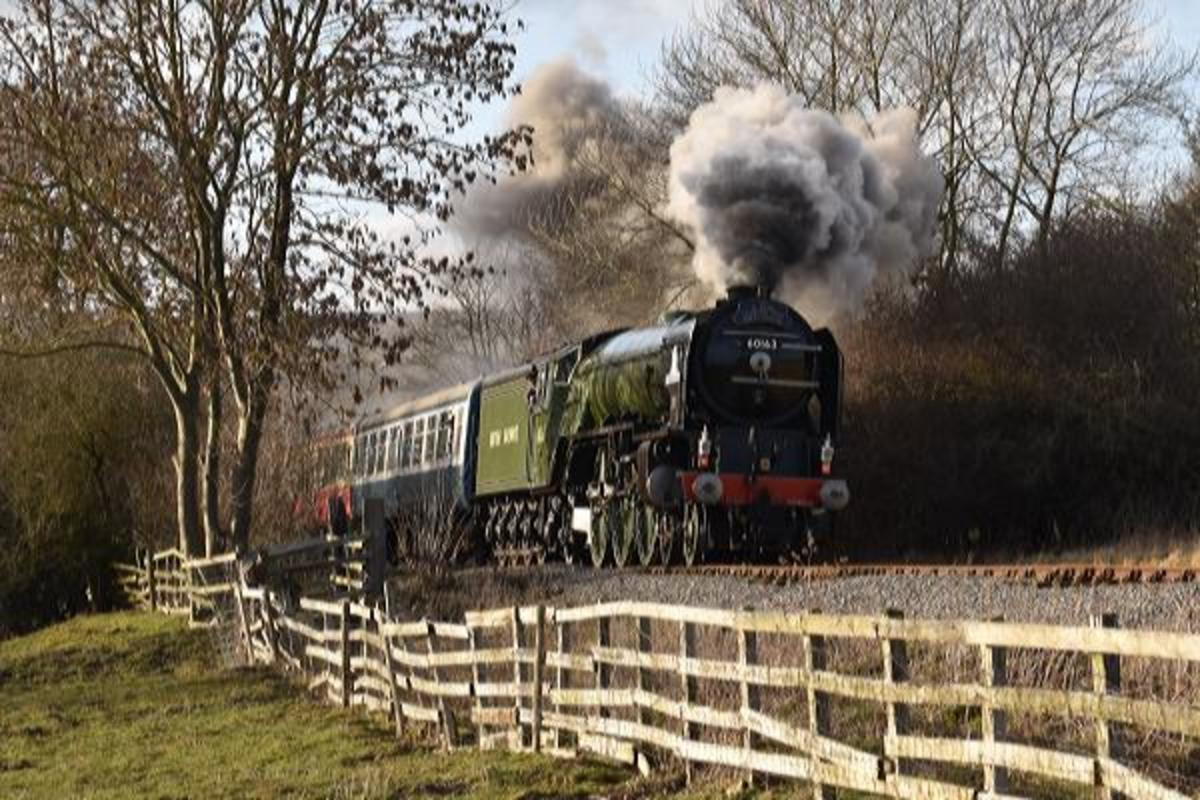 'Tornado' on her second return from Redmire on one day during her mid-February visit - see also the following pair of views