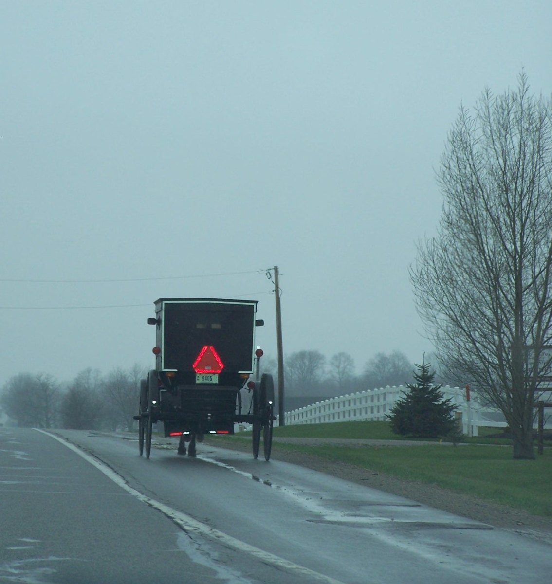 How Do Amish And Mennonites Make Money? How About Cruel Puppy Mills!