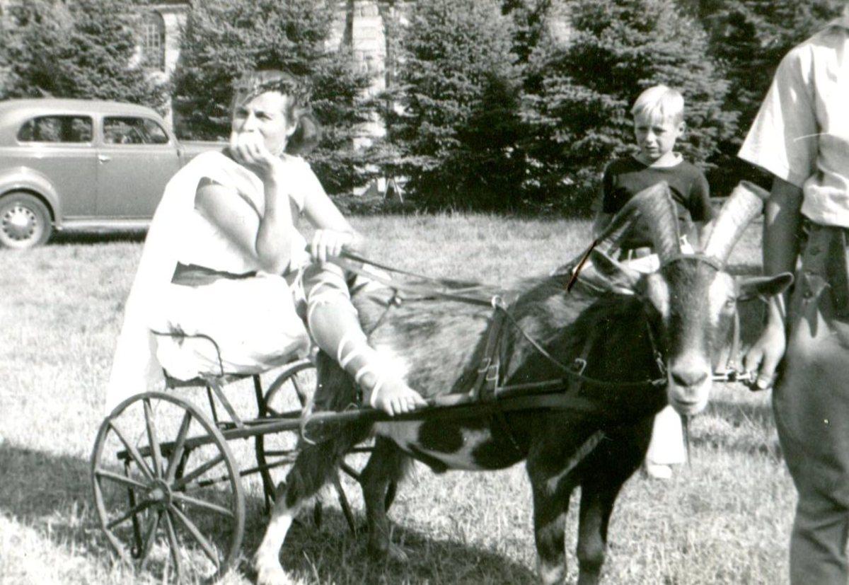 Goat Carts