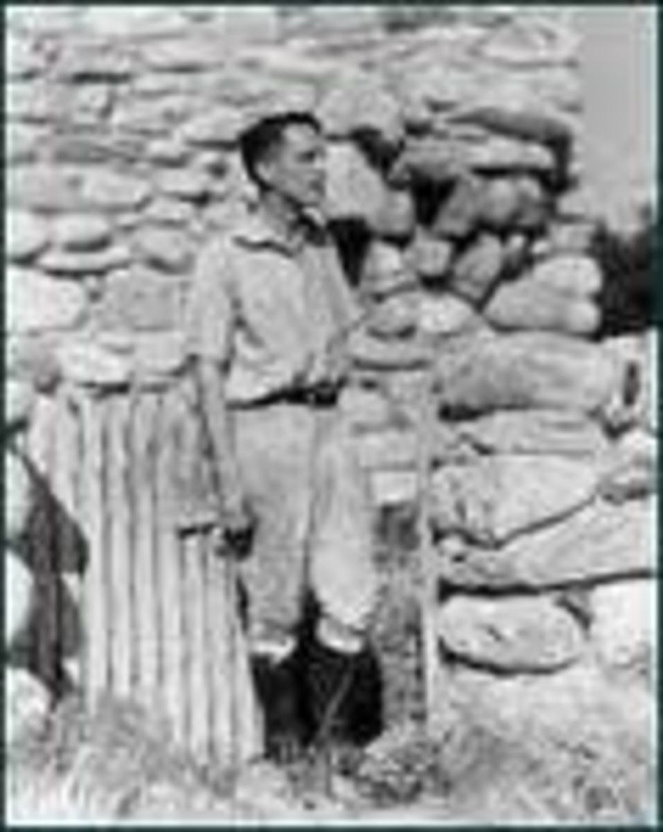 a literary analysis of robinson jeffers poetry Educated in english literature, medicine, and forestry, jeffers inherited money  that allowed him to write his poetry his third book, tamar and other poems ( 1924).