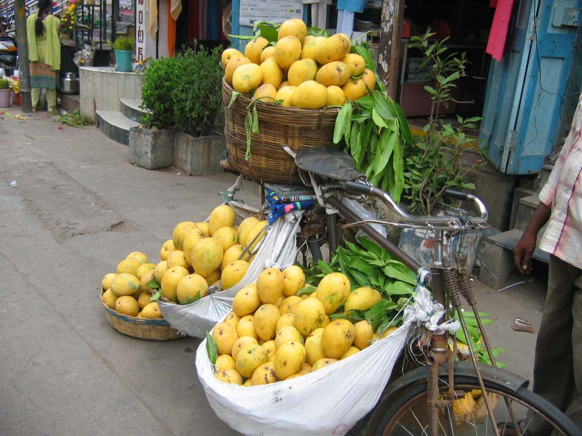 tempting mangoes in rural India