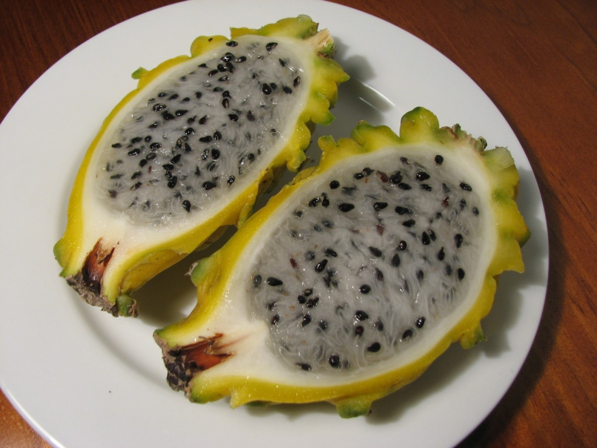 Yellow Dragonfruit: The Sweetest Pitaya of All | HubPages
