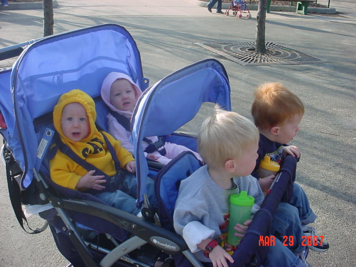 Our Foundations Quad stroller at the zoo