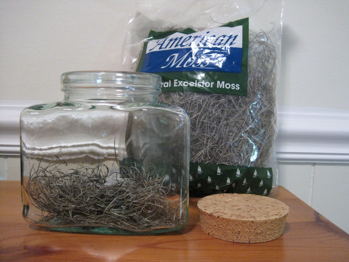 Line the jar with American Moss or other craft cover