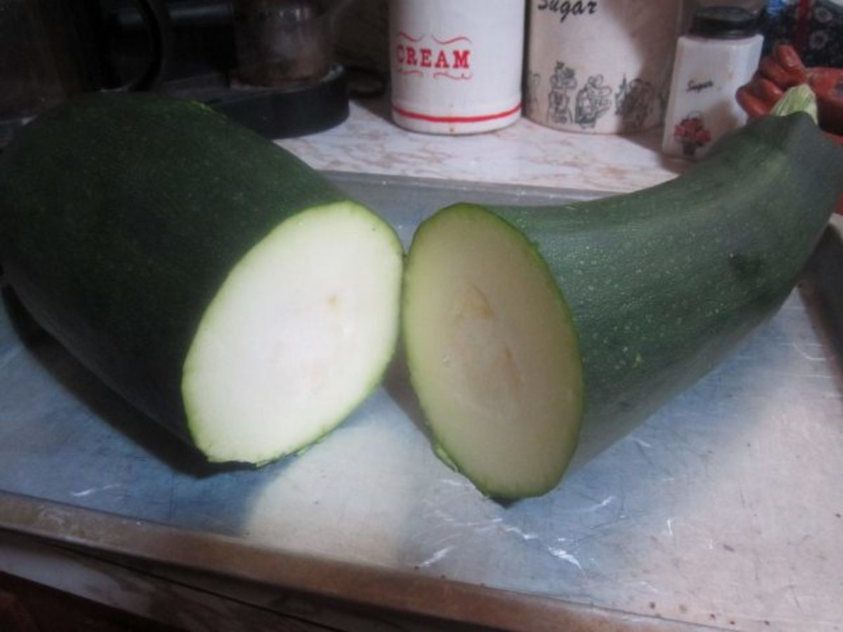 Cut zucchini in half. Then cut those halves horizontally in half.