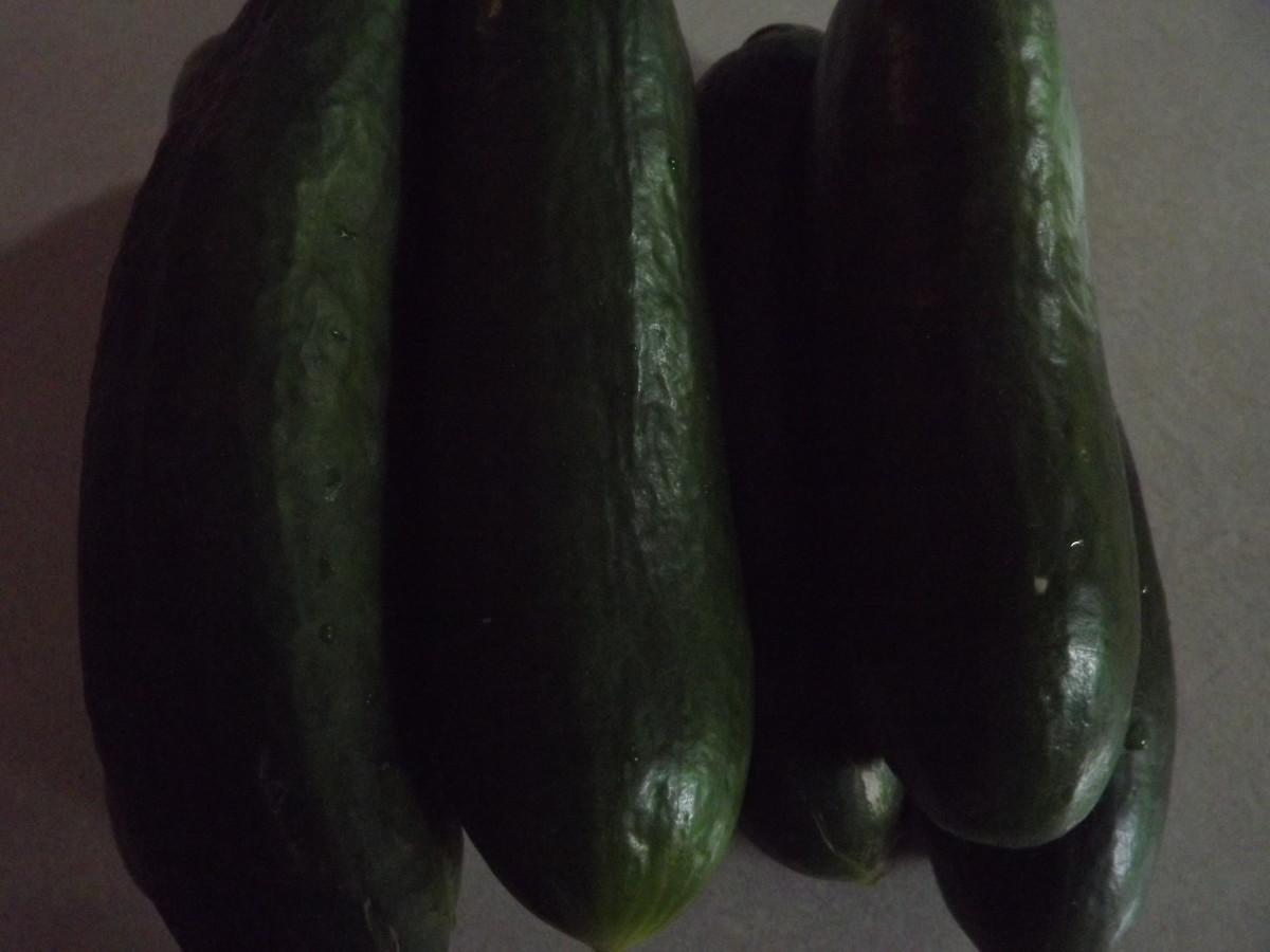 Use ripe cucumbers