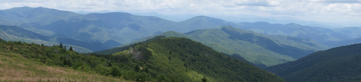 The view from Tennent Mountain.