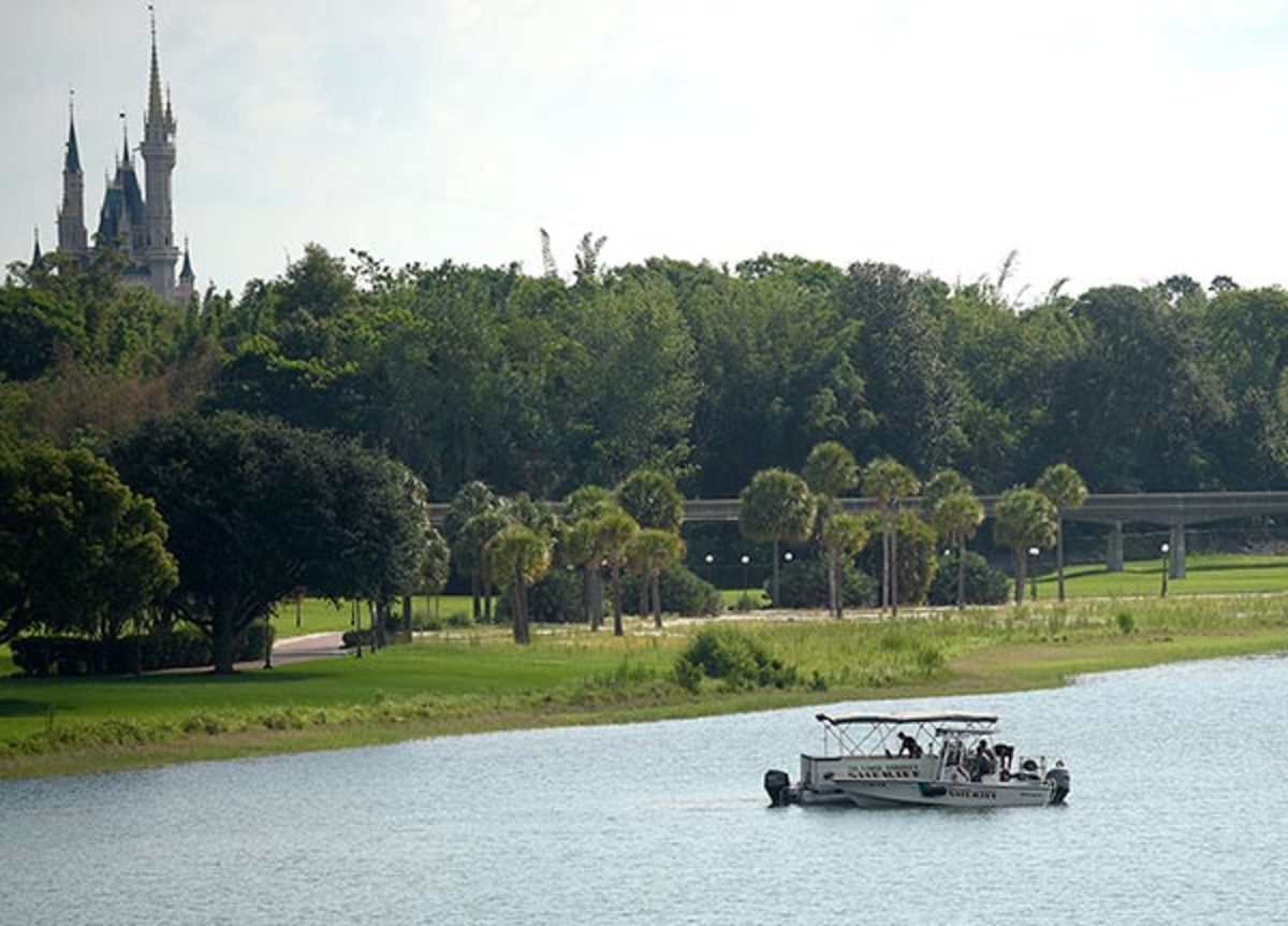 The gator took the child from a shallow water area near a resort beach.