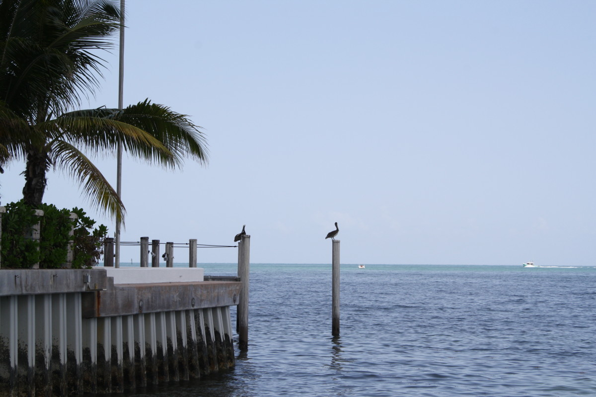 The Atlantic Ocean from the tip of Key West