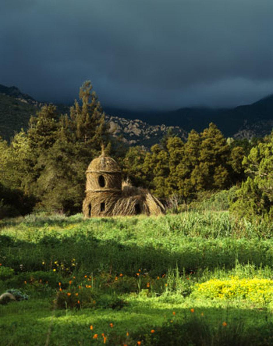 Toad Hall @ Santa Barbara Botanic Garden, Santa Barbara, CA, 2005. (Photographer: Nell Campbell)