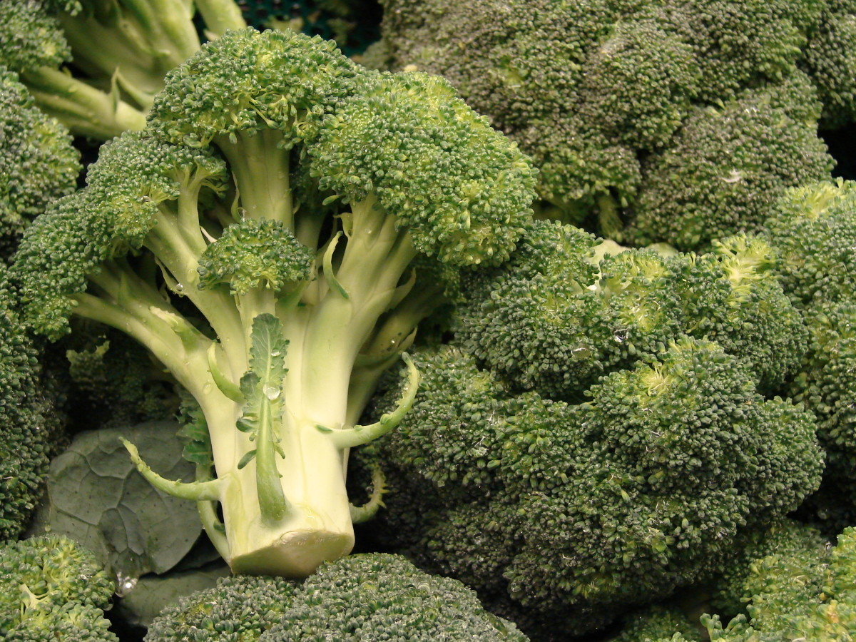 The Amazing Health Benefits of Broccoli - an Exceptional Anticancer Superfood and More