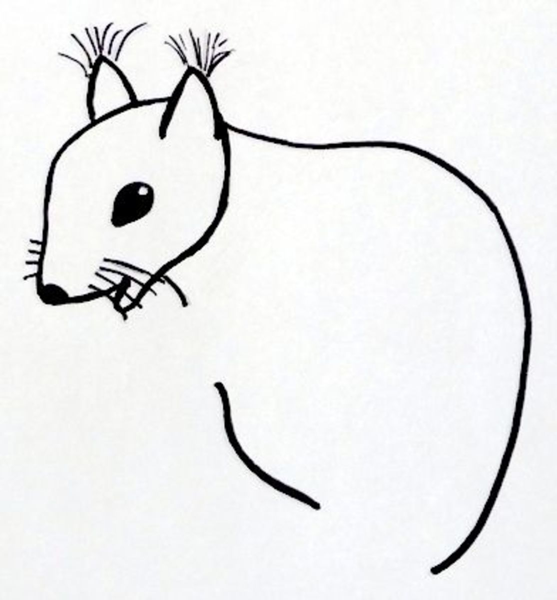 Step 6: This is going to be squirrel's body.