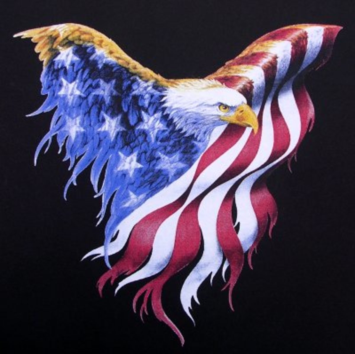 Is the United States Still A Free Country? Does The United States Have A Tyrannical Government?