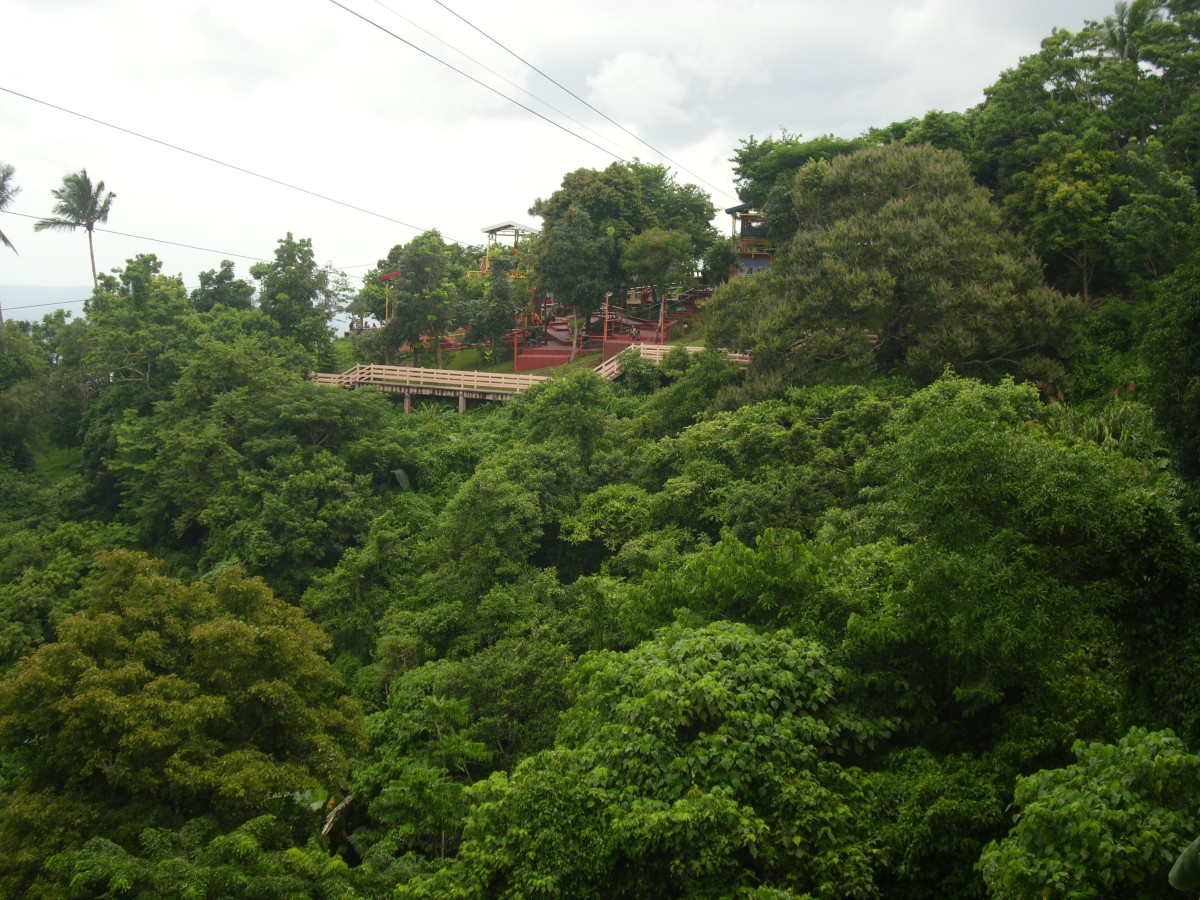 The Hanging Bridge from a lower view point.