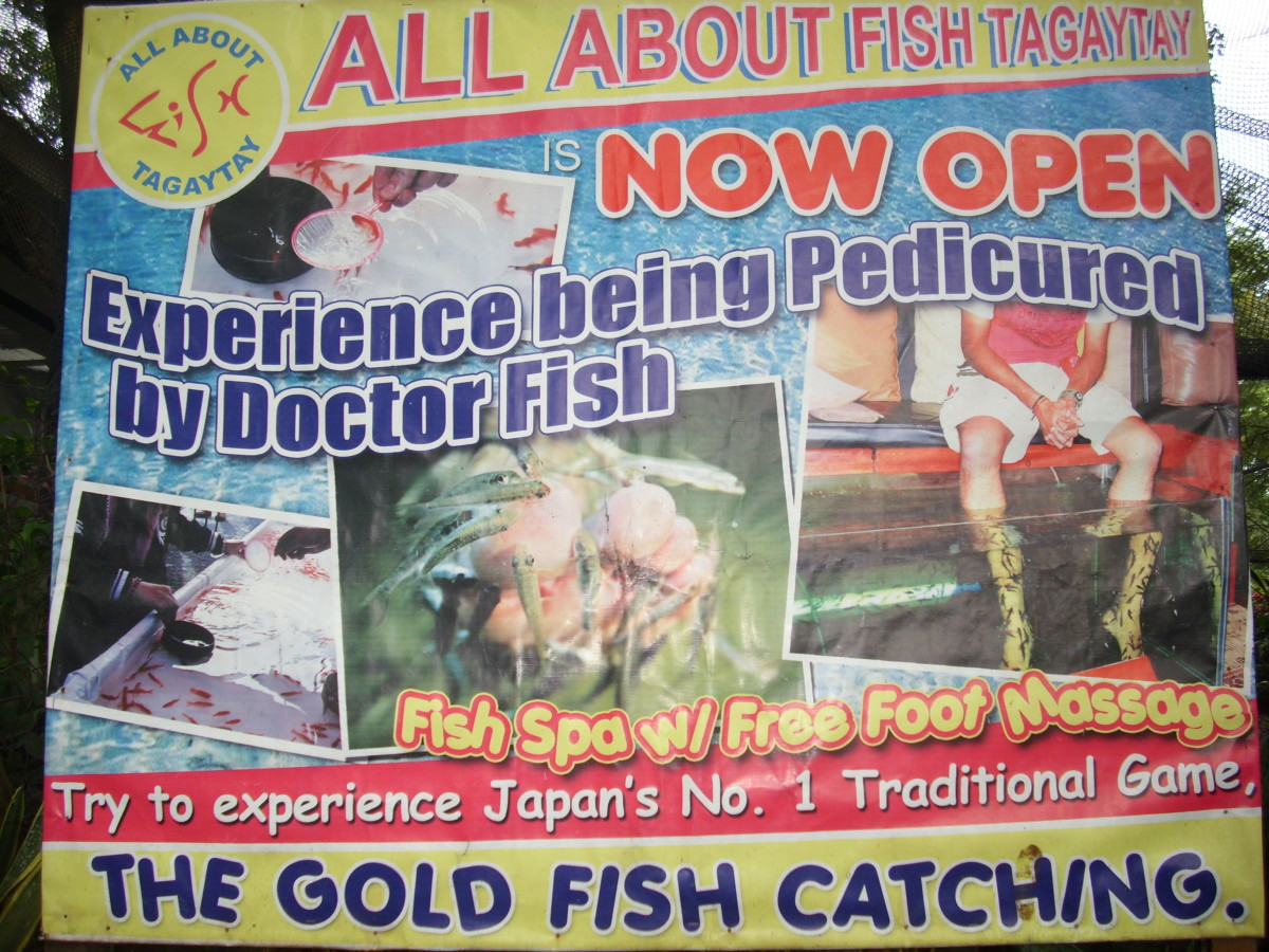 Fish Spa Advertisement
