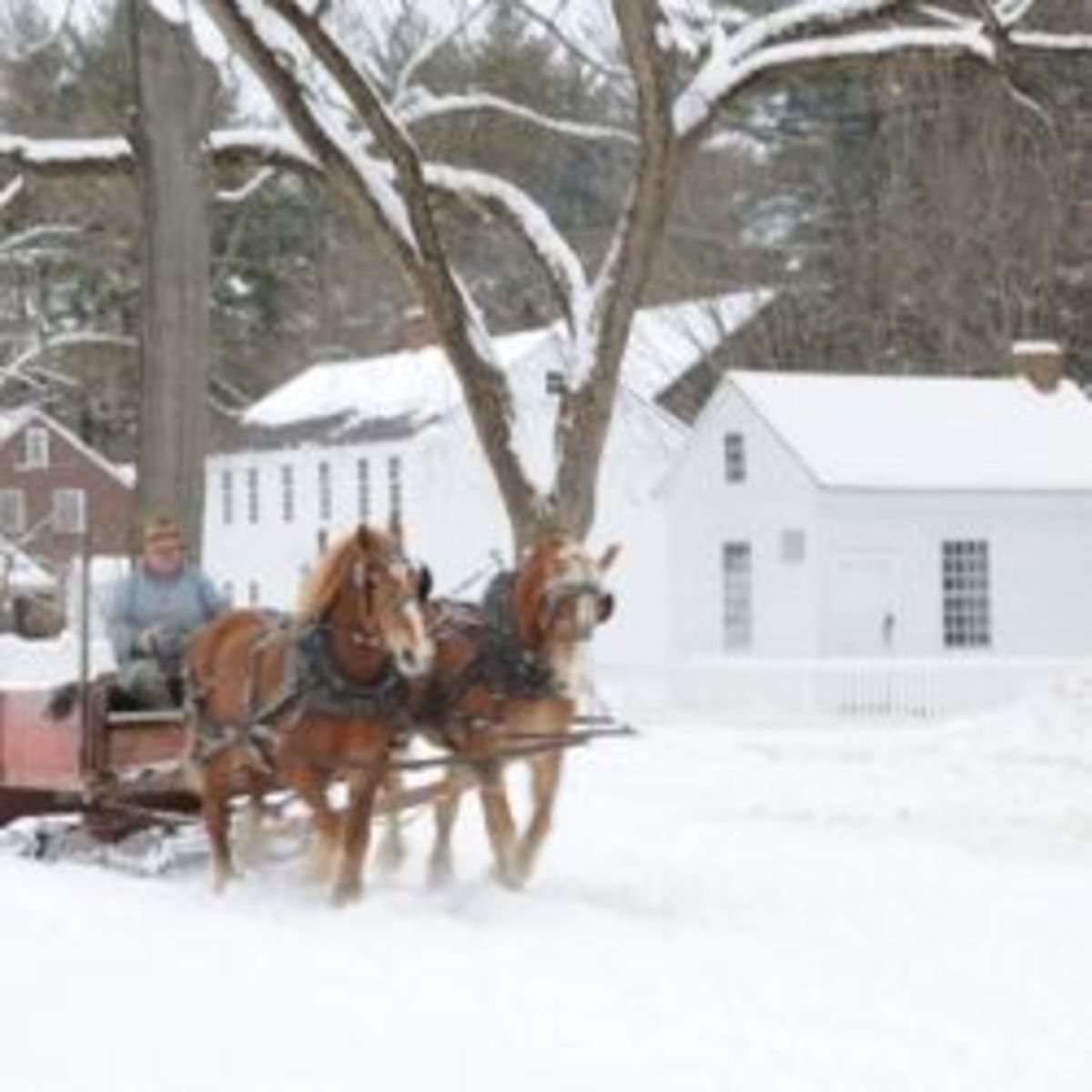 Image credit: http://thespicegarden.blogspot.com/2011/02/old-sturbridge-village.html